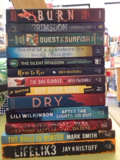 Thanks to Dani at Readings Kids for this selection